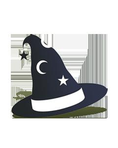 wizarts logo